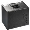 AER Domino 2A acoustic instrument amplifier