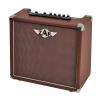 Zar A-20R acoustic guitar amplifier, 20W