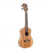 Canto DUC450 concert ukulele with cover