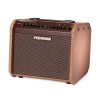 Fishman Loudbox Mini Charge guitar amplifier
