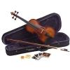 Carlo Giordano VS 0 4/4 student violin