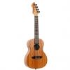 Ortega RUHZ-MM Horizon Series concert ukulele