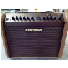 Fishman Loudbox Mini Charge guitar amplifier (B-STOCK)