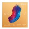 D′Addario A-310M 4/4 Ascente Medium 4/4 violin string set