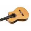 Ortega BWSM/2 nylon 6-str. guitar ortega Ben Woods signature model cutaway/fishman/thinline/gig bag