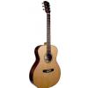 Dowina Danubius GA acoustic guitar